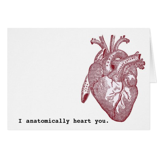 I anatomically heart you cards
