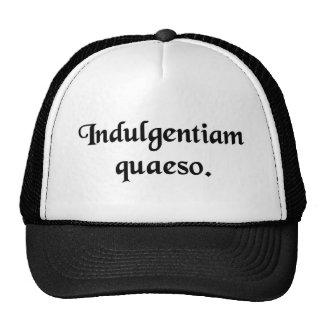 I ask your indulgence. mesh hats