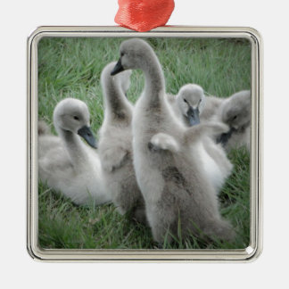 I believe I can fly.jpg Christmas Ornament