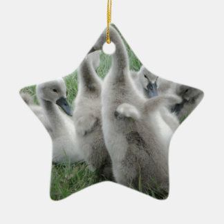 I believe I can fly.jpg Christmas Ornament