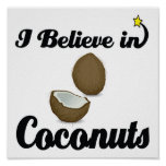 i believe in coconuts poster