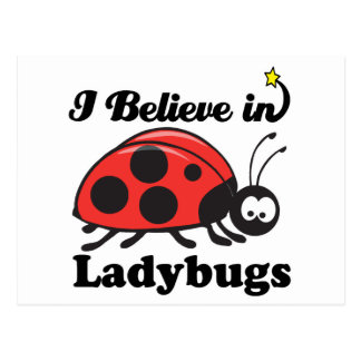 i believe in ladybugs postcard