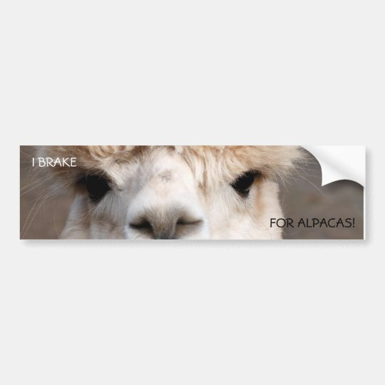 I BRAKE, FOR ALPACAS! BUMPER STICKER
