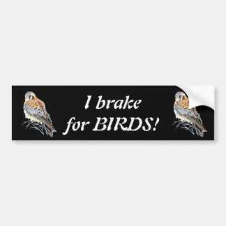 I brake for Birds Kestrel or Falcon Watercolor Bumper Sticker