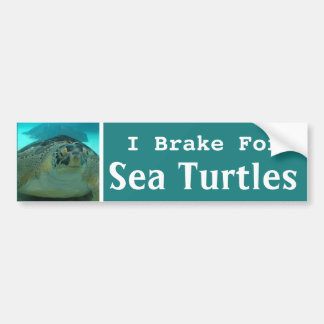 I Brake For Sea Turtles Bumper Sticker