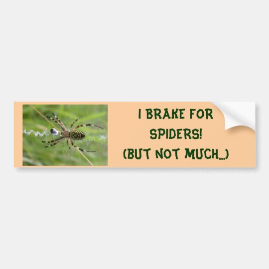 I BRAKE FOR SPIDERS (not much) bumper sticker