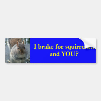 I brake for squirrels...and YOU? Bumper Sticker