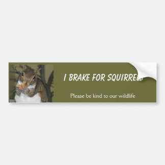 I Brake for Squirrels Bumper Sticker