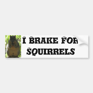 I Brake For Squirrels - Humor Bumper Sticker