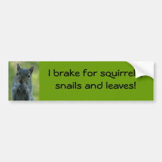 I brake for squirrels, snails and leaves bumper sticker