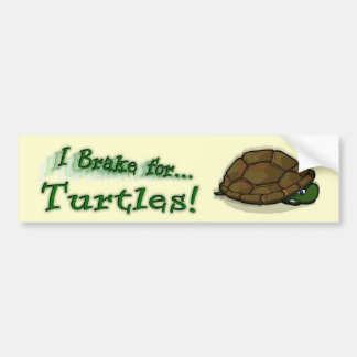 I Brake for Turtles! Bumper Sticker