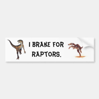 I Break For Raptors. Bumper Stickers