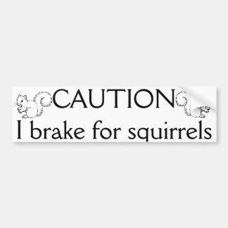 I break for squirrels bumper sticker