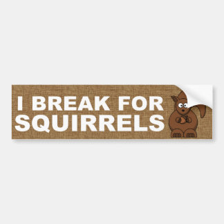 I break for Squirrels Bumper Sticker