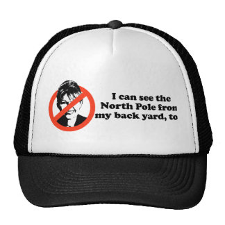 I can see the North Pole from my back  yard Trucker Hats