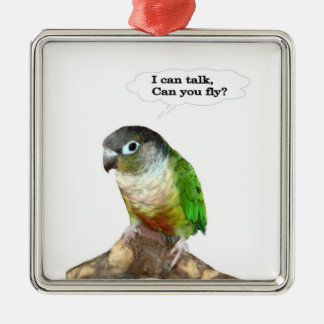 I can talk, can you fly? christmas ornament