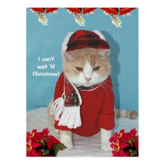 I can't wait 'til Christmas! Postcard