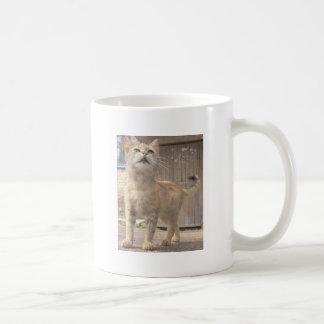 I Care Enough Mug
