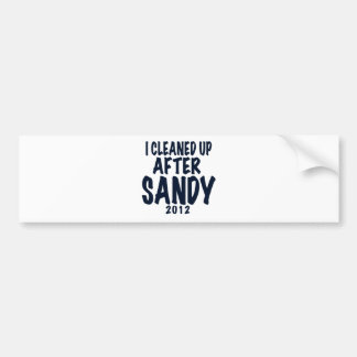 I Cleaned Up After Sandy, Hurricane Sandy gifts Bumper Sticker