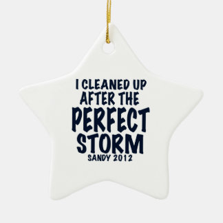 I Cleaned Up After the Perfect Storm, Sandy 2012, Ceramic Star Decoration