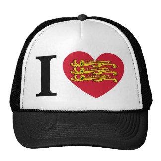 I Coil Normandy Mesh Hat