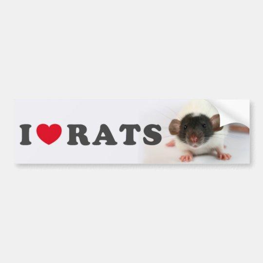 I coils (cute) Rats Bumper Sticker