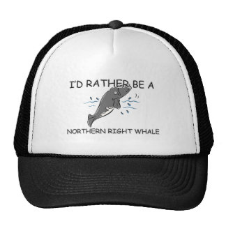 I d Rather Be A Northern Right Whale Trucker Hats