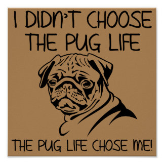 I Didn't Choose The Pug Life Funny Poster Sign
