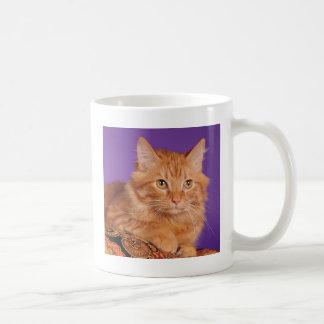 I didn't do it coffee mug