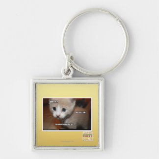 I didn't do it. Silver-Colored square key ring