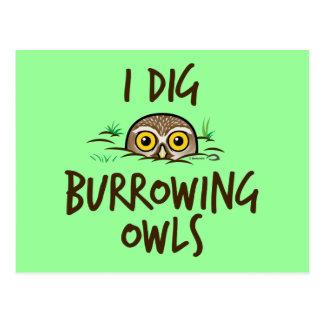 I Dig Burrowing Owls Postcard