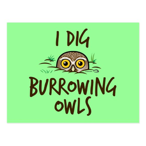 I Dig Burrowing Owls Post Cards