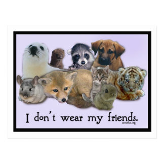 I Don t Wear My Friends Post Cards