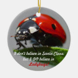 I Don't Believe in Santa Claus - Ladybug Ornament