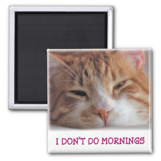 I Don't Do Mornings Magnet