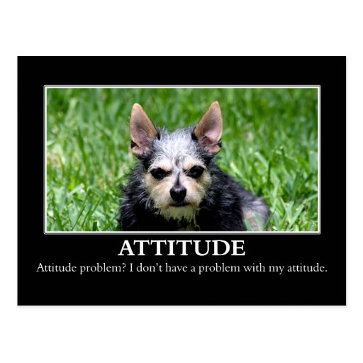 I don't have an attitude problem post cards