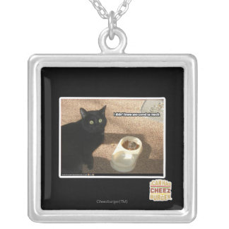 I don't know you cared silver plated necklace