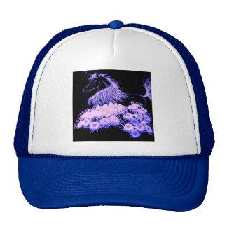 I dream of unicorns cap