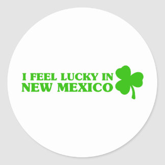 I feel lucky in New Mexico Round Stickers