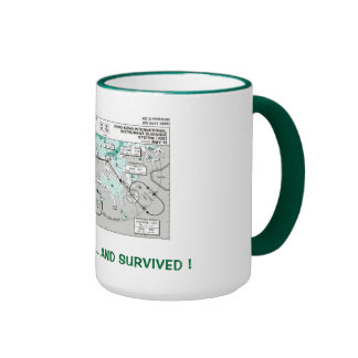 I Flew the IGS ... and Survived ! Ringer Mug