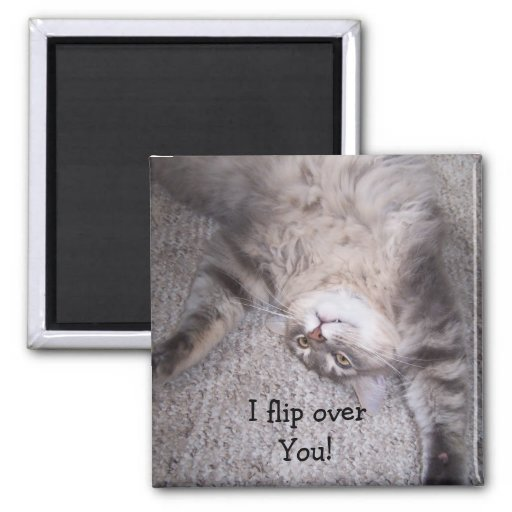 I flip over You! magnet