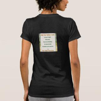 I follow the Reiki Path & Reiki Priciples T Shirt