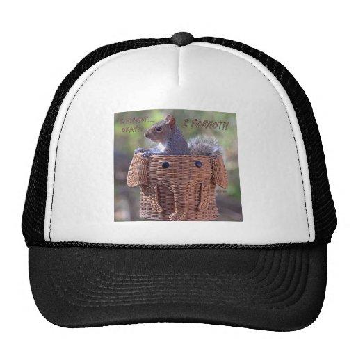 I forgot … Okay? … I FORGOT!! Hats