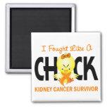 I Fought Like A Chick Kidney Cancer Survivor