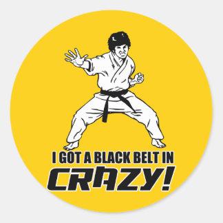 I Got A Black Belt in Crazy Classic Round Sticker