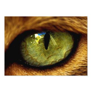 I Got My Eye On You Lion Invitation