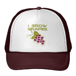 I Grow Grapes Tshirts and Gifts Mesh Hat