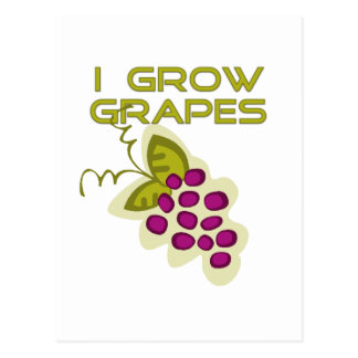 I Grow Grapes Tshirts and Gifts Postcard