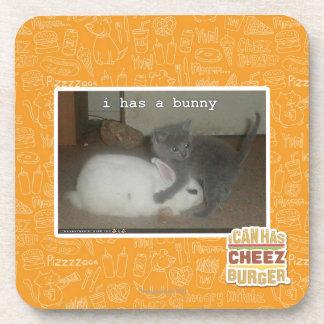 I has a bunny coaster