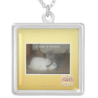 I has a bunny silver plated necklace